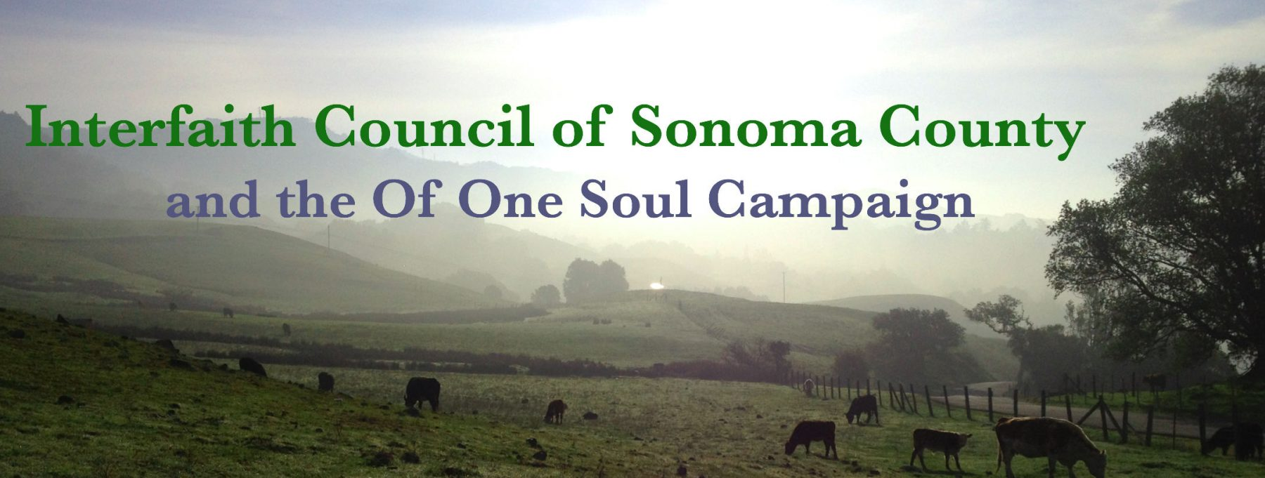 Interfaith Council of Sonoma County